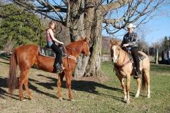 Horses-4-16-2008-002