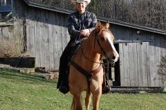 Horses-4-16-2008-005